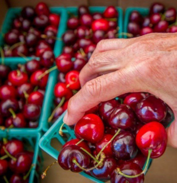 The city of Beaumont's annual Cherry Festival