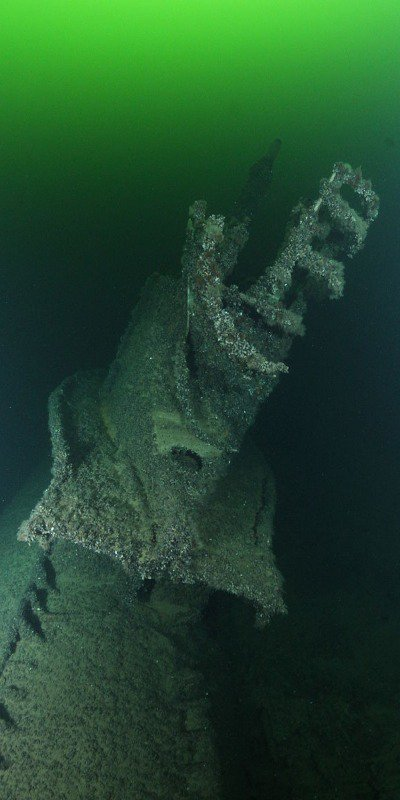 Artifacts and ruins left underwater are quickly covered in marine life.