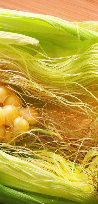 Corn silk is edible
