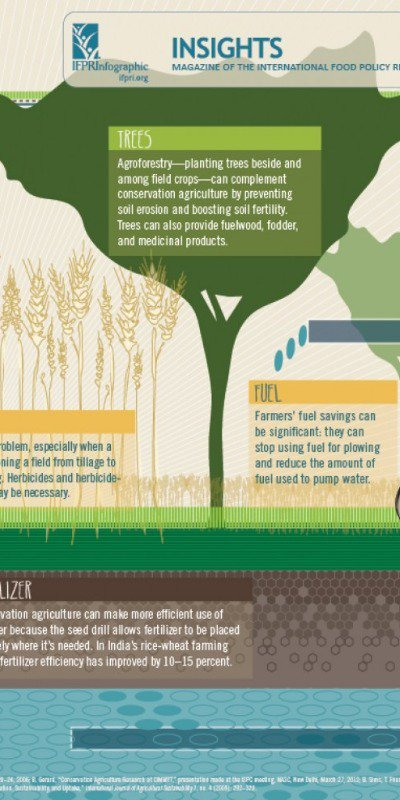 Conversation Agriculture infographic part II