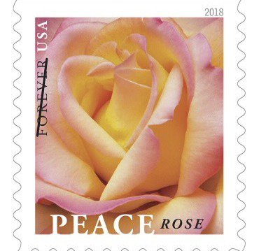The Rose stamp