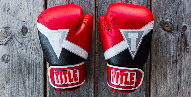 These are the classic gloves used in MMA fighting