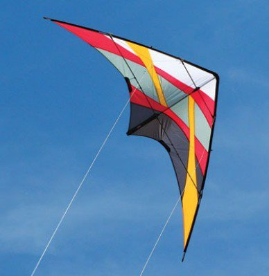 A stunt kite with 2 lines