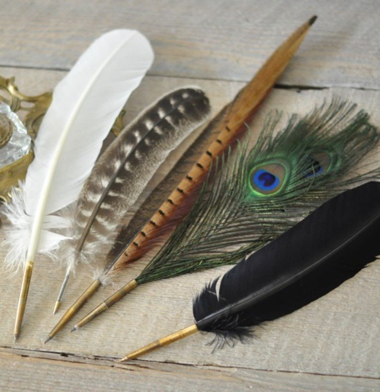 What a beautiful assortment of feathered quill pens.