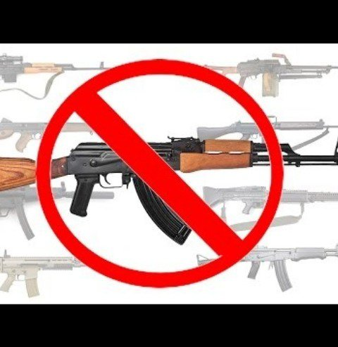 All assault rifles should be banned