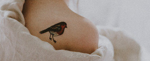 Bird tattoos are a great option for a shoulder tat