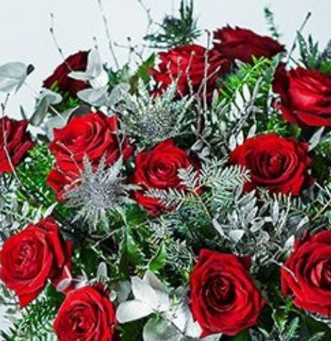 Red and white roses are considered very Christmasy.